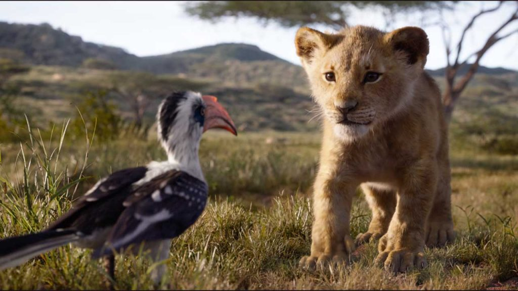 Lion King Movie - Things to do with kids Bazinga Parties Cape Town