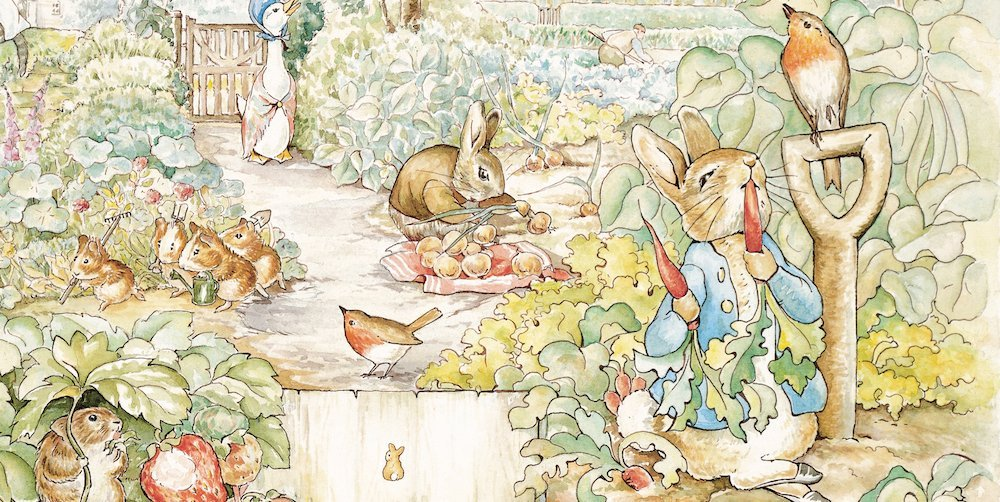 Peter Rabbit Book Review Bazinga Cape Town